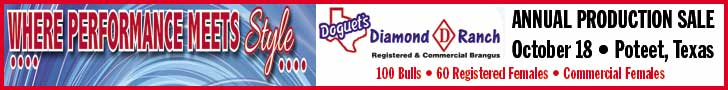 Doguet Diamond D Sale_9-18-14