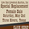 Live Oak Auction_4-8-15