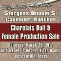 Sturgess/Cavender_box_2-11-17
