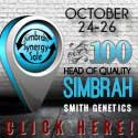 Synergy Sale_2014