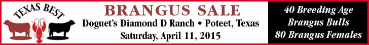 Texas Best Sale_3-11-15